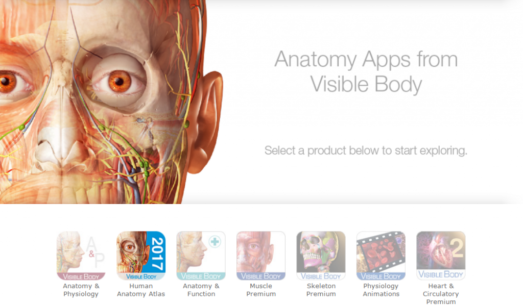 Visible Body Human Anatomy Atlas Provides Students With Stunning 3d